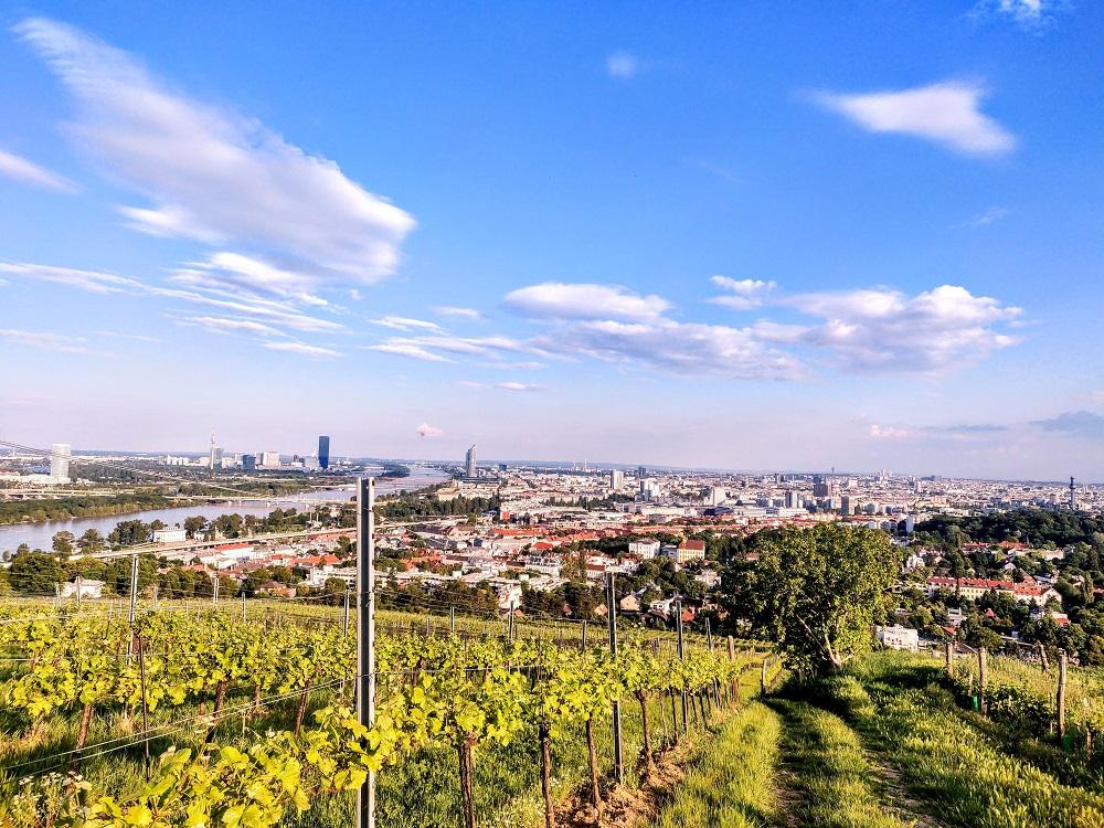Heurigen Vienna