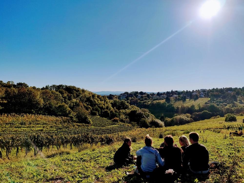wine hiking Vienna